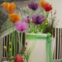 Rozkwit wiosny (6)